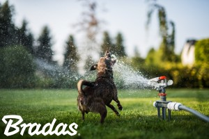 Bewässerung von Rasenflächen und Gärten